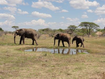 Tanzania_516